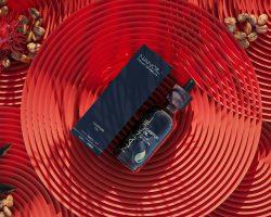 Nanoil Rizinusöl für besseres Haarwachstum
